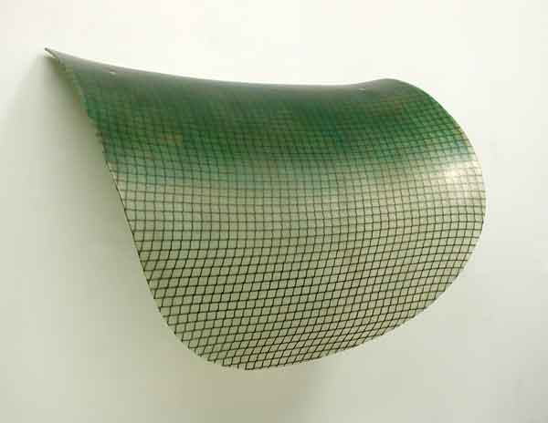 <h3>MIKE SOLOMON</h3> 						<h4><em>Petalon</em></h4> 						2008 - 2010</br> 						Nylon net, epoxy, and fiberglass with tints</br> 						33 x 44 x 14 inches</br>